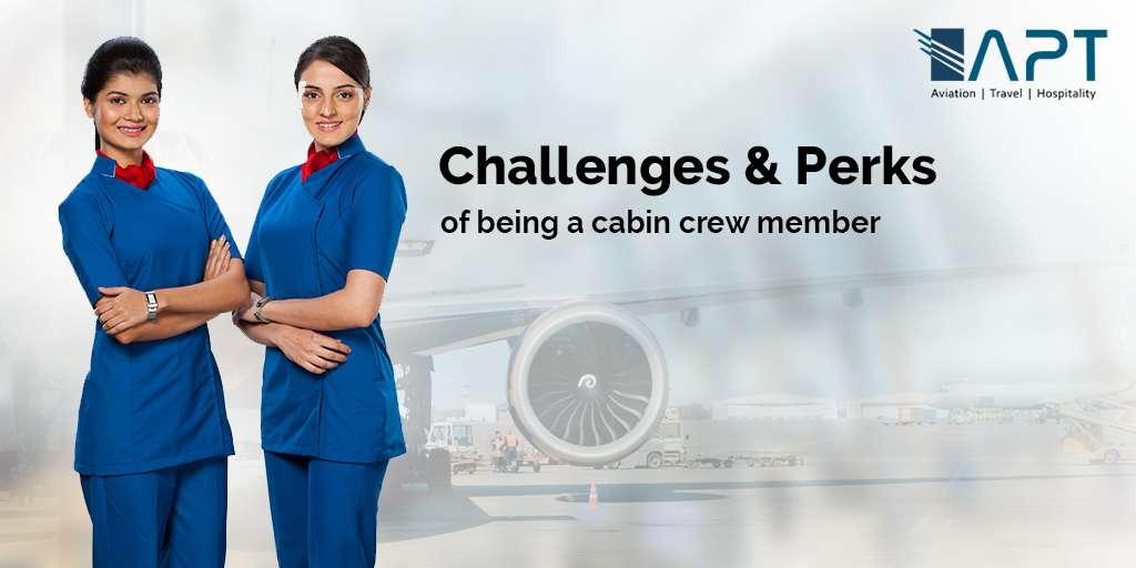 cabin crew member